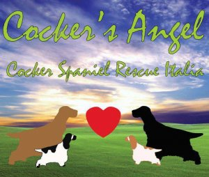 Cocker's Angel Rescue