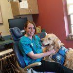 cane dal dentista