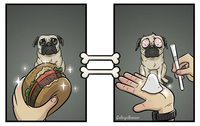 robert-brown-dog-burger