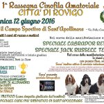 1° Rassegna Cinofila Amatoriale Città di Rovigo