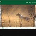 Kennel Club Dog Photographer of the Year
