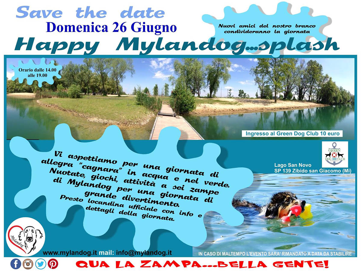 Happy Mylandog Splash