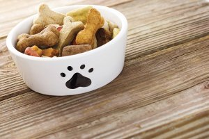 alimentazione-cani-anziani-1-