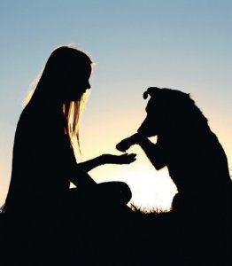 primo cane addomesticato