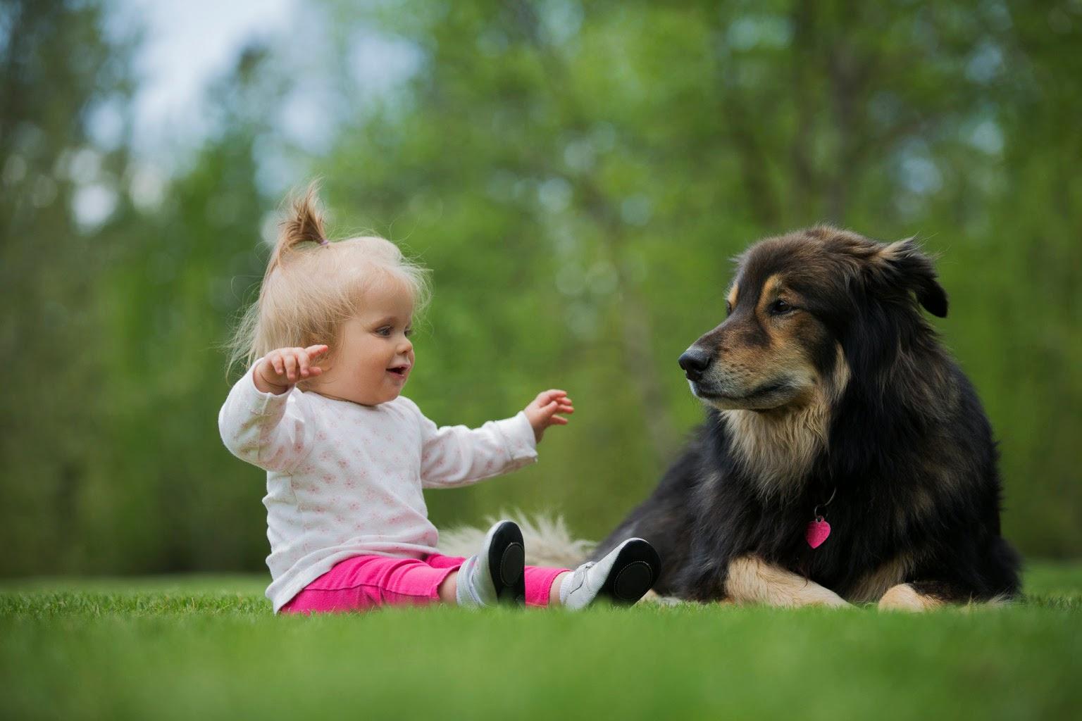 Come preparare il cane all'arrivo di un neonato in famiglia
