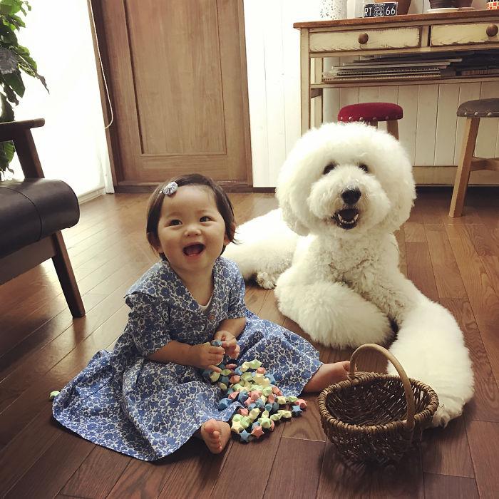 L'amicizia fra una bambina e il suo cane