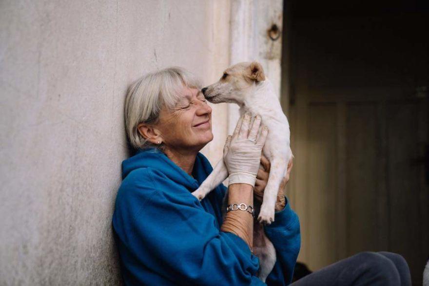 La signora che ha salvato 80 cani abbandonati