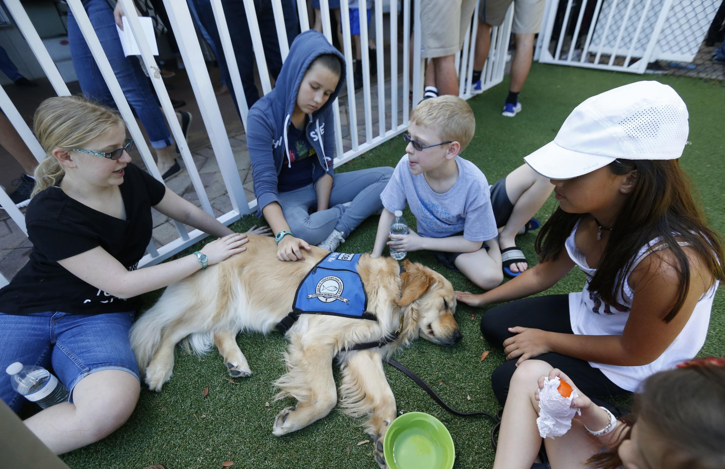 Jacob: il cane terapeutico delle vittime americane