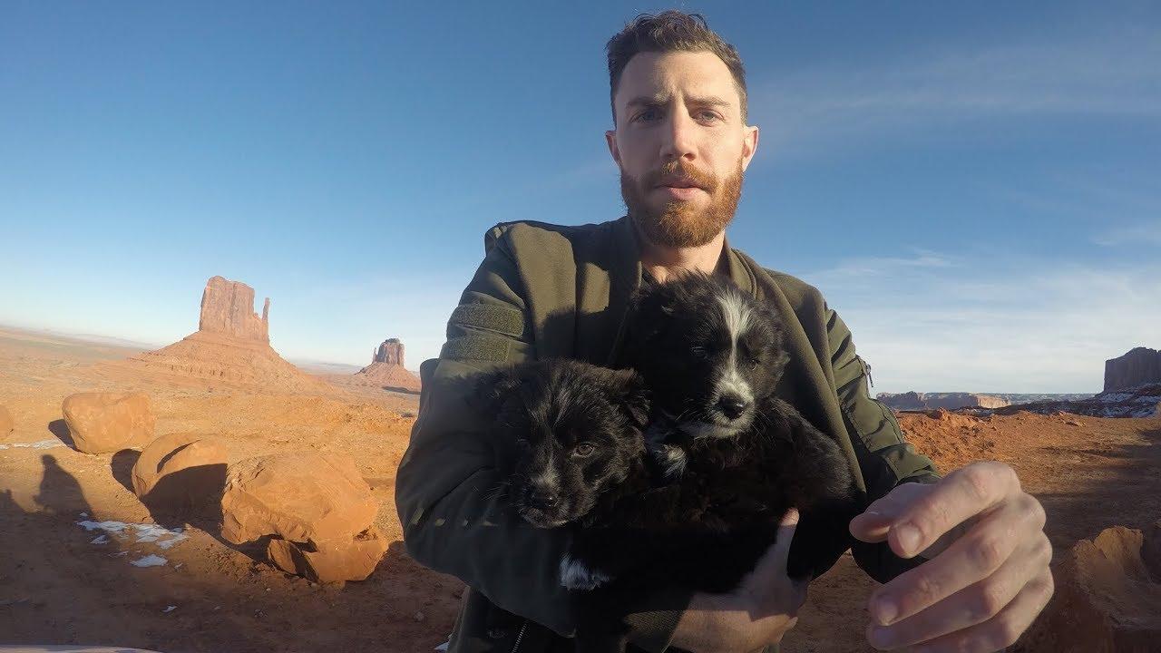 Globetrotter salva due cuccioli e gira il mondo con loro