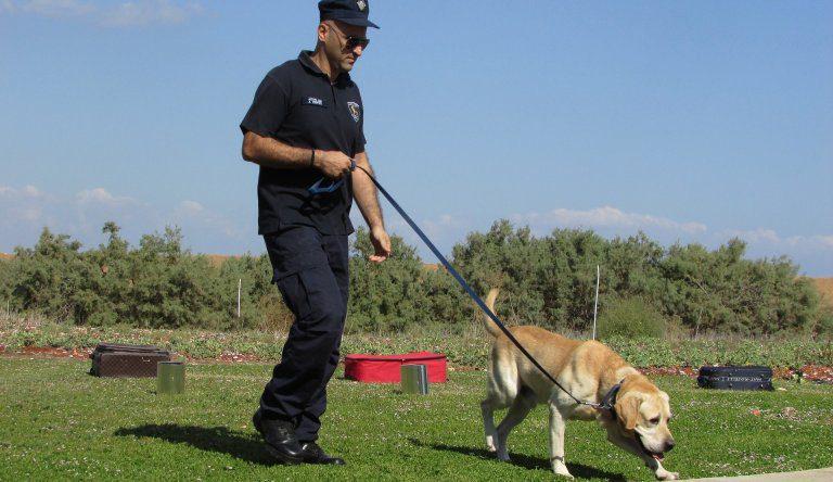Scuola Per Cani Poliziotto Di Asti Entrano Solo Trovatelli