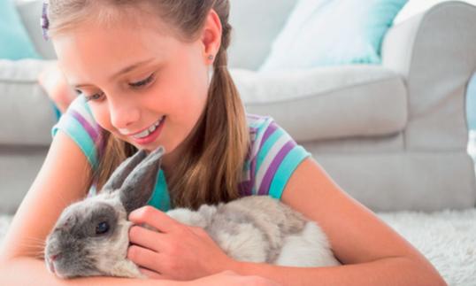 Toelettare il nostro coniglietto: non solo estetica ma un buon modo per curare la sua salute