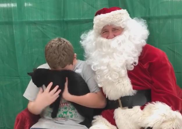 Un bambino volontario riceve un gattino da Babbo Natale