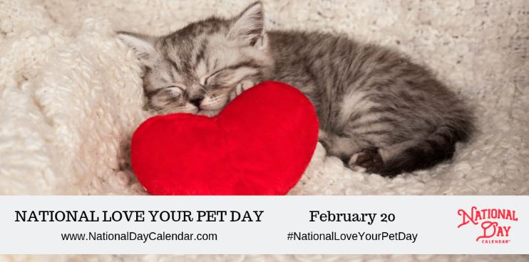 National Love Your Pet Day: la festa dedicata agli animali domestici