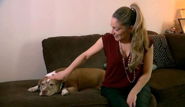Pit Bull salva la famiglia da una fuga di gas
