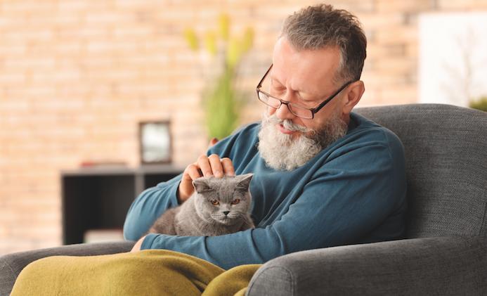 Gatti: una compagnia per gli anziani