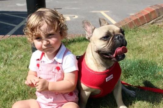 Medico salva bambino malato di cuore e i genitori, entrambi veterinari, gli curano il cane