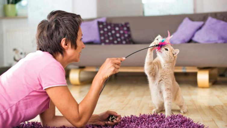 Gioco del gatto: ecco come stimolare la sua intelligenza