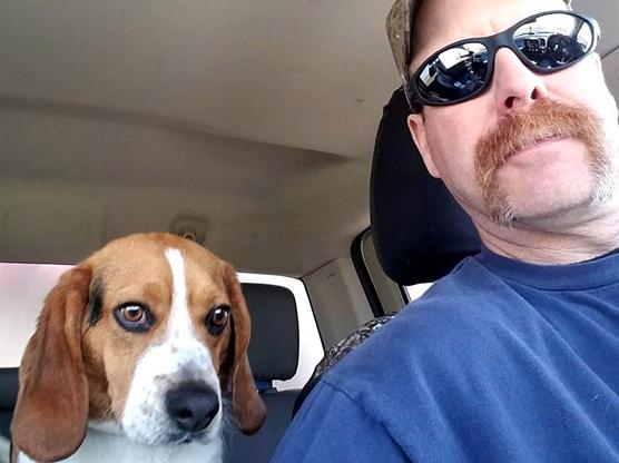 Salvato un cane Beagle chiuso in un rifugio pronto per la soppressione