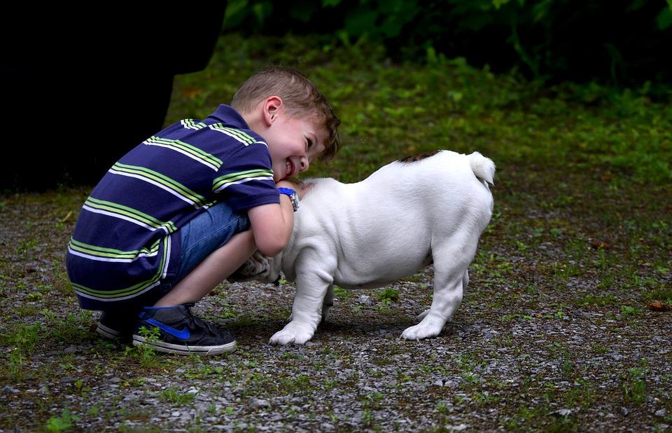 Pet Therapy Come Gli Animali Fanno Bene Alla Salute Delle Persone Amici Di Casa