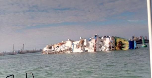 Queen Hind: I soccorritori tentano di salvare 14.000 pecore sulla nave da carico ribaltata