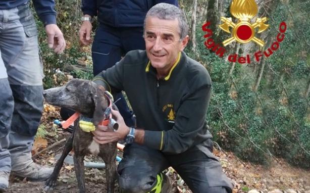 Esanatoglia: vigili del fuoco salvano un cane intrappolato in una buca