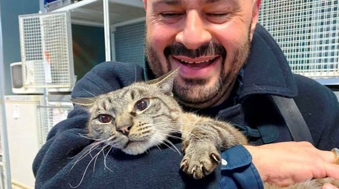 Perde il gatto a Asti e lo ritrova dopo due mesi a Savona