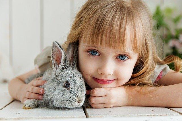 Quanto vive un coniglio?